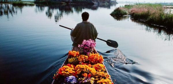 Srinagar Honeymoon Packages